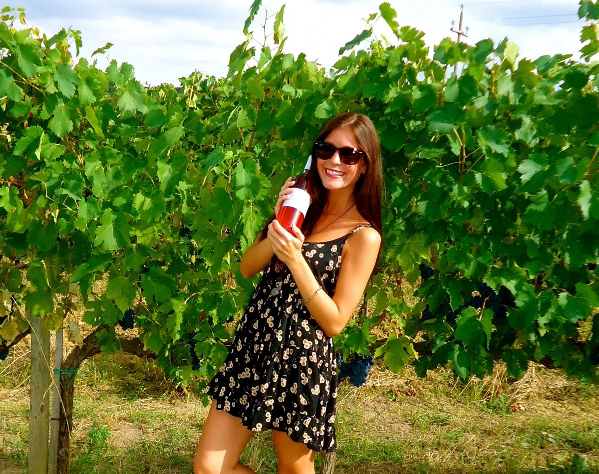 Salcheto Winery - Montepulciano, Emilia-Romagna, Italy