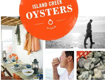 islandcreekoysters.com